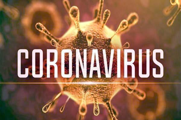 ملک میں کورونا وائرس کے وارجاری؛ مزید 539 کیسزرپورٹ
