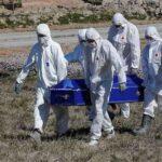 کورونا وائرس ،ملک بھر میں مزید 17افراد جاں بحق،اموات 6129ہو گئیں