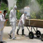 کورونا وائرس ، دنیا بھر میں 2167092   ہلاکتیں...امریکہ میں ہلاکتیں 435452،بھارت میں 153751