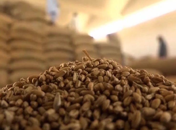 گندم کی ذخیرہ اندوزی میں ملوث عناصر کے خلاف ملک بھر میں کریک ڈاون کا فیصلہ