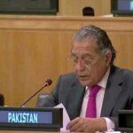 ترقی پذیر ممالک کو قرض ادائیگی کی مہلت میں توسیع دی جائے: منیر اکرم