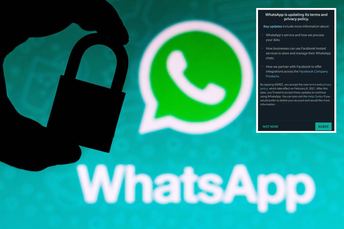 واٹس ایپ پالیسی میں تبدیلی موخر؛ فواد چوہدری نے فیصلہ درست قراردیدیا