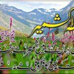پاکستان سمیت دنیا بھر میں آج یوم یکجہتی کشمیر بھرپور جوش و جذبے سے منایا جا رہا ہے