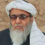 رینٹل مارچ میں ایک بار پھر مولانا فضل الرحمن کو ماموں بنایا جارہا ہے: حافظ حسین احمد
