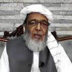 بلاول زرداری نے ایک بار پھر استعفیٰ دینے والے بیان کو ویٹو کردیا: حافظ حسین احمد